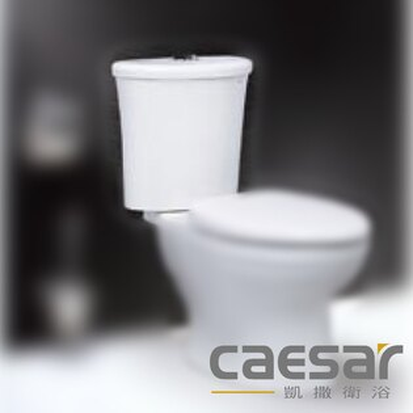 【caesar凱撒衛浴】一段式水箱附水箱零件(T1128-PW)
