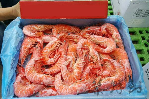 泰國熟白蝦 40/50 1.2kg±10% / 盒