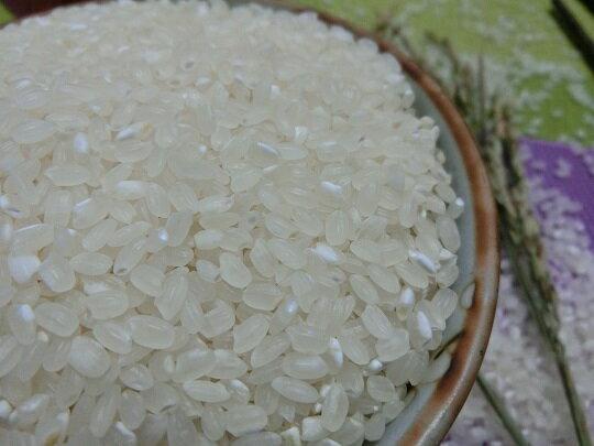 富里米 來自花蓮 豐饒土地  米之珍品600g