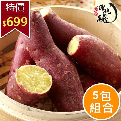 【屏榮坊】阿諾紅地瓜  (5KG/5包) ,獨特栗子口感,帶皮食用好吃加倍(不附贈禮盒)