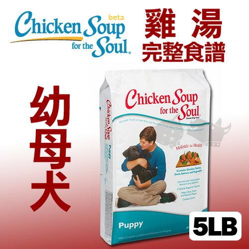 《美國雞湯》幼母犬潔牙 / 抗氧化配方 - 5LB / 狗飼料