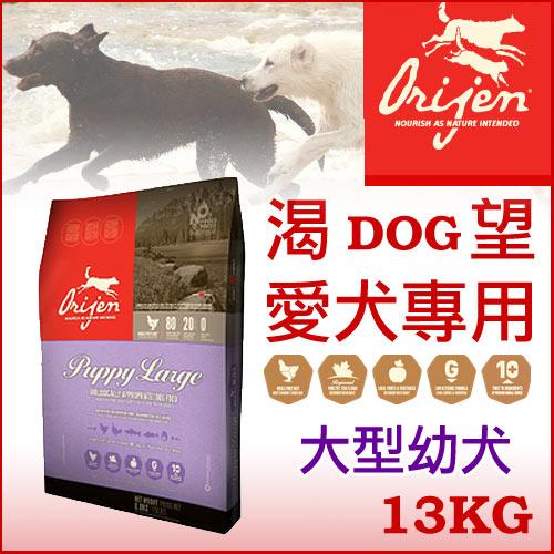 《加拿大Orijen 渴望》大型幼犬 Puppy Large 13kg - 犬飼料