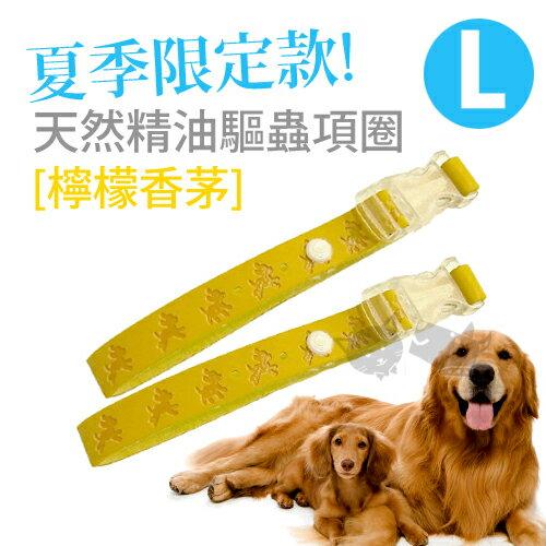 ~Ayumi天然精油驅蟲項圈~L犬用^(買一送一^)夏日限定~檸檬香茅