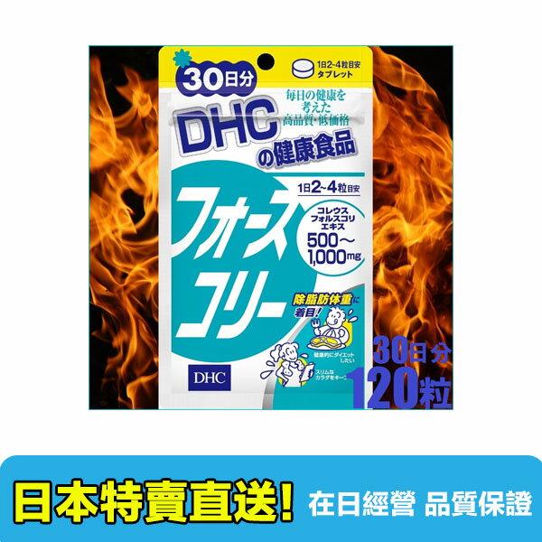 【海洋傳奇】日本DHC 燃脂修身素 30天份【滿3000元免運】 - 限時優惠好康折扣