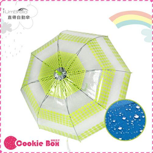 *餅乾盒子* 韓國 環保 阿波羅 自動傘 直傘 雨傘 透明 宮廷 印花 彈性好 輕量 不翻傘 堅固 耐用 防風