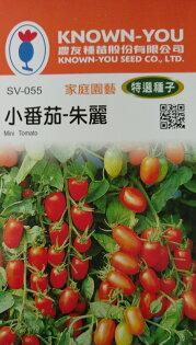 """【尋花趣】小番茄-朱麗 農友種苗 """"特選蔬果種子"""" 每包約20粒 保證新鮮種子"""