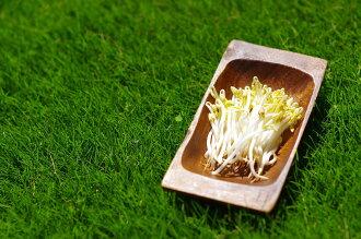 鮮勁有機綠豆芽菜 (200g)