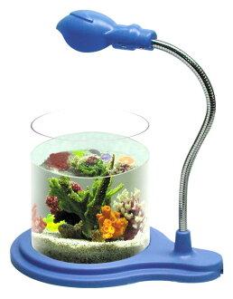 辦公室小魚缸 鬥魚缸 創意魚缸 孔雀魚缸 生態缸水族箱2W夾燈