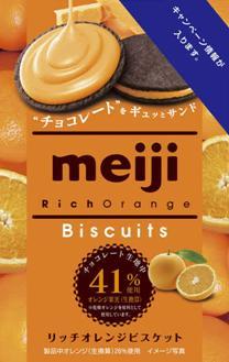 有樂町進口食品 日本明治Rich香橙餅乾 (96g)  J65 4902777224954 0