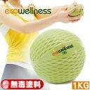 【ecowellness】環保1KG重量藥球C016-00711(抗力球健身球復健球.韻律球訓練球重力球重球.運動健身器材.推薦哪裡買)