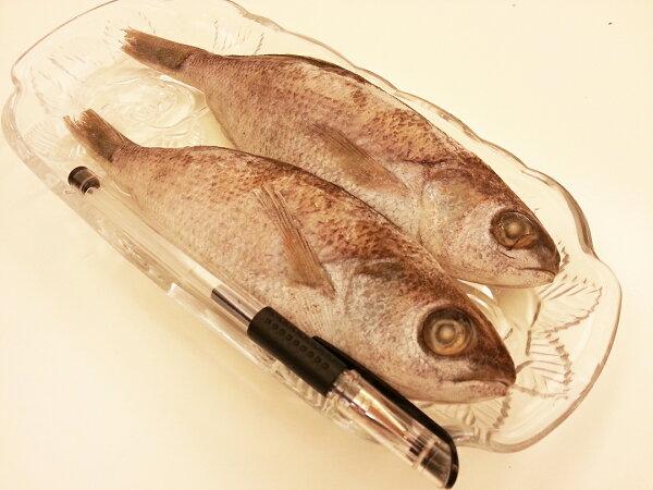 【雞籠好魚】野生黑喉魚*1包組(450g-480/1包,1包5條)  ★肉質滑口細緻無小刺,老少都適合★
