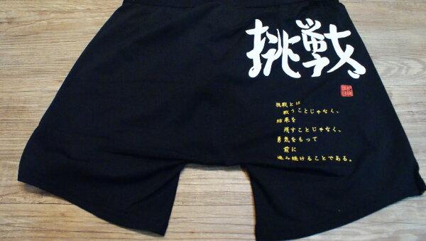 棒球世界 ZETT 11年日本進口 挑戰字樣 緊身褲 特價