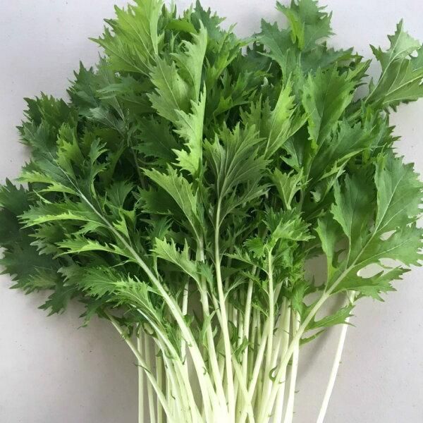 『水野菜』無農藥日本品種「京都水菜」250g