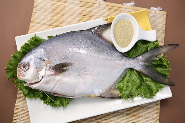 【食魚屋】金鯧魚400±50g