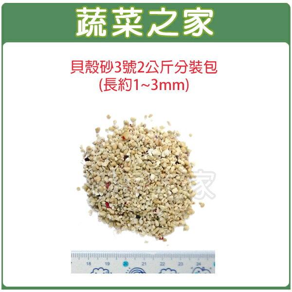 【蔬菜之家001-AA23】貝殼砂3號2公斤分裝包(長約1~3mm珊瑚石.米貝石.貝殼石)