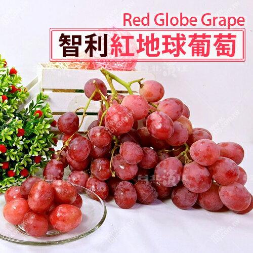 【台北濱江】智利紅地球葡萄 1KG裝