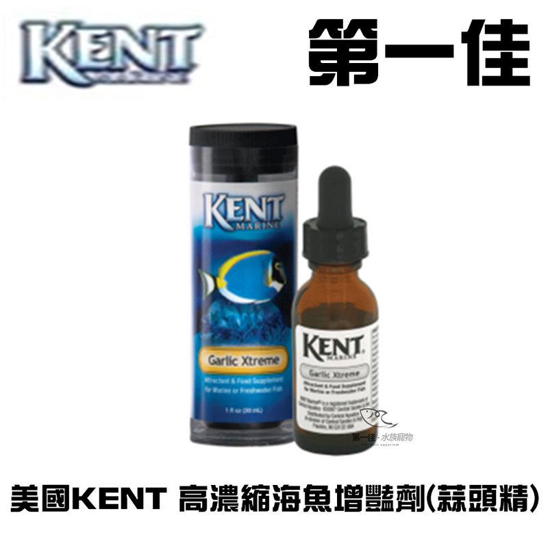 ^~第一佳水族寵物^~美國KENT 高濃縮海魚增豔劑^(蒜頭精^) 4oz