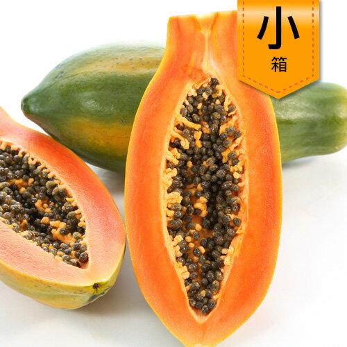 天然木瓜^(小箱^)