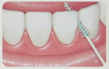 GUM SOFT PICK 軟式牙間牙籤清潔棒 240p*『康森銀髮生活館』無障礙輔具專賣店 4