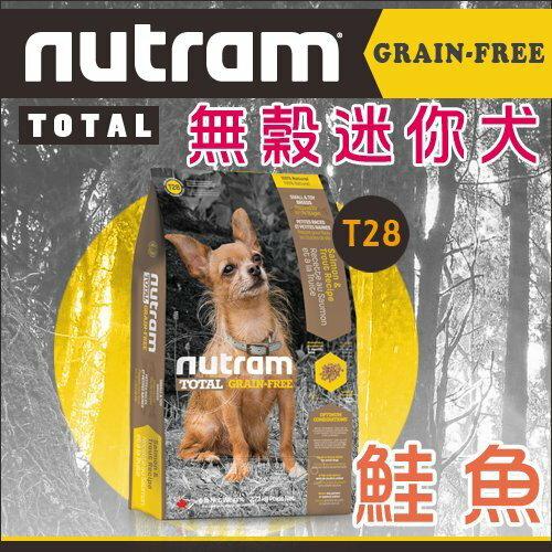 +貓狗樂園+ 紐頓nutram【無穀迷你犬糧。T28鮭魚。2.72kg】1005元 - 限時優惠好康折扣