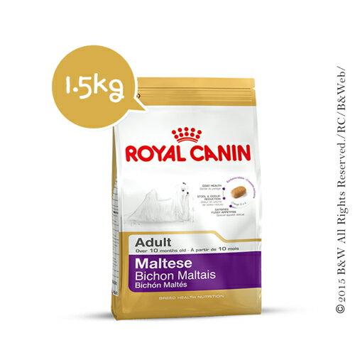 《倍特賣》 法國皇家_馬爾濟斯成犬PRM24 1.5KG