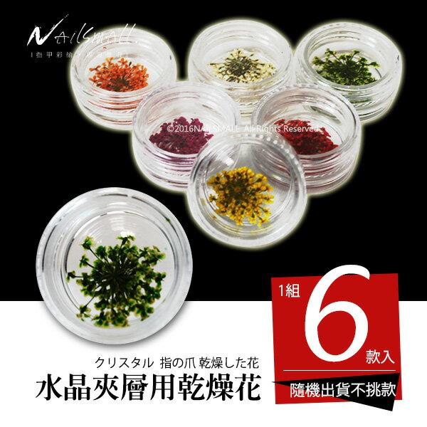 水晶夾層用乾花.乾燥花 6色入(每色約3g)款式隨機出貨 凝膠指甲裝飾乾花