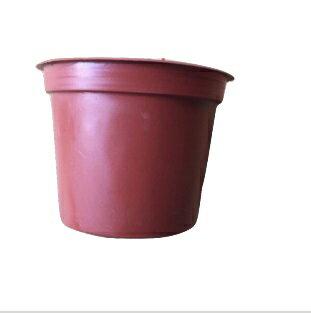 【尋花趣】3寸塑膠 紅盆 3吋 塑膠盆 小品盆 紅色花盆 口徑:8.8 高:7(公分)
