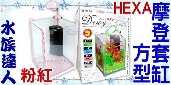 【水族達人】海薩 HEXA《方型摩登套缸.粉紅》魚缸+電燈+過濾器