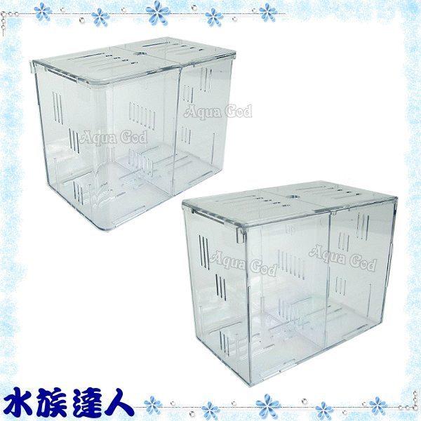 【水族達人】湯姆TOM《水中隔離盒》鬥魚盒 方便您飼養鬥魚!