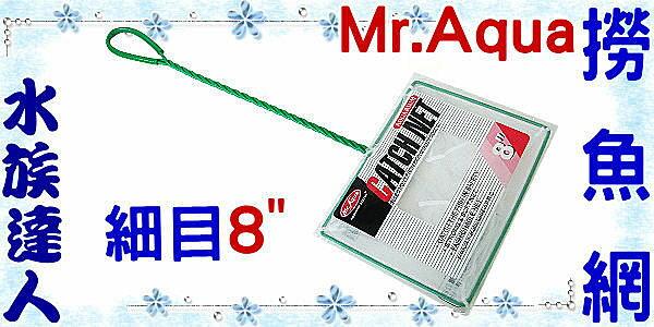 【水族達人】水族先生Mr.Aqua《CATCHNET撈魚網(細目)8吋》養魚必備品!