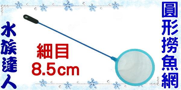 【水族達人】《超細目圓形撈魚網8.5cm》可過濾豐年蝦苗,撈懸浮物!