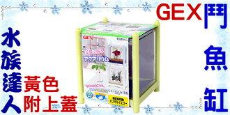 【水族達人】【水族箱魚缸】日本GEX《鬥魚缸.黃色》迷你、小巧、時尚!