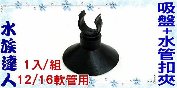 【水族達人】《吸盤+水管扣夾.12/16軟管用.1入/組》超實用!