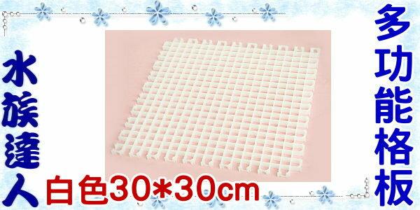【水族達人】ISTA代理《多功能格板 30* 30cm (白色)》也可當隔板/珊瑚繁殖基座