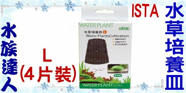 【水族達人】伊士達ISTA《水草培養皿.L(4片裝)》適用於墨絲/鹿角苔