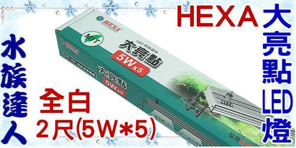 【水族達人】海薩 HEXA《600 大亮點 LED燈 (5W*5) 2尺/全白》60cm 跨燈 56~64cm魚缸適用