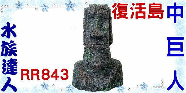 【水族達人】美國授權販售《復活島中巨人RR843》摩艾巨石/石像/巨像/營造復活島的水底世界 !