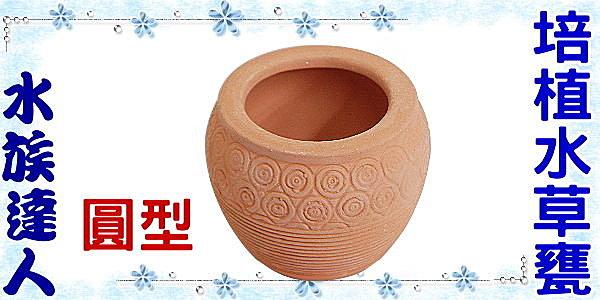 【水族達人】【造景飾品陶瓷甕】《圓型培植水草甕》繁殖、躲藏、過濾、裝飾