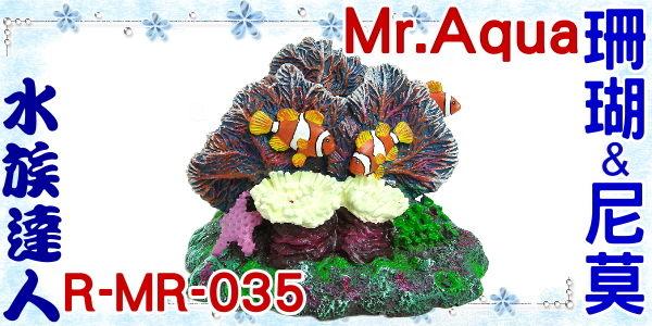 【水族達人】【造景裝飾】水族先生Mr.Aqua《珊瑚&尼莫.R-MR-035》珊瑚礁/小丑魚