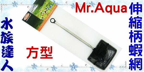 【水族達人】水族先生Mr.Aqua《伸縮柄蝦網˙方型》撈魚網