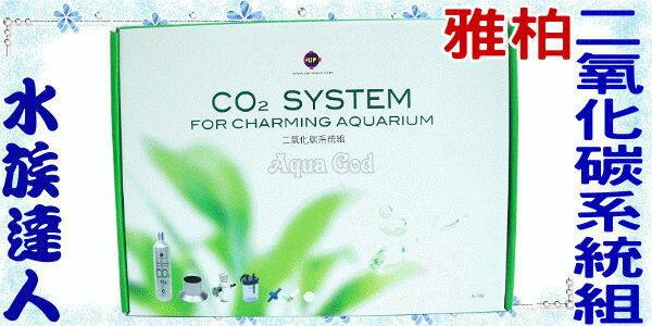 【水族達人】雅柏UP《二氧化碳系統組》拋棄式CO2鋼瓶專用!