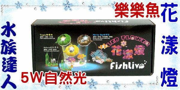 【水族達人】樂樂魚FishLive《花漾燈 LED夾燈.自然光 5W.黃色燈殼》