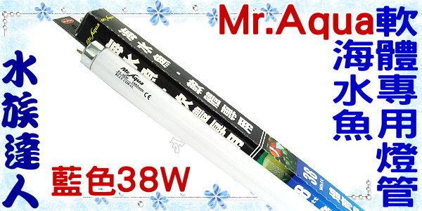 【水族達人】水族先生Mr.Aqua《T8海水魚/軟體專用培育燈管.藍色38W》可增進海水軟體生長