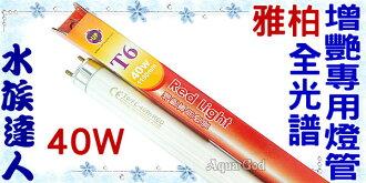 【水族達人】【T6燈管】雅柏UP《全光譜增艷專用燈管40W》增豔/超明亮!