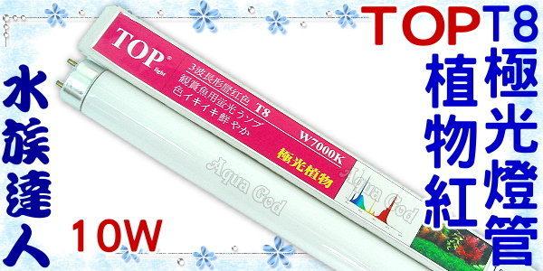 ~水族 ~TOP~T8極光燈管^(植物紅^).7000K^(10W^)~超明亮! ~  好