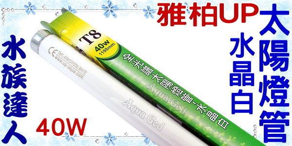 【水族達人】雅柏UP《T8全光譜太陽燈管.水晶白.40W》知名品牌、大眾價格!