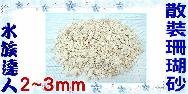【水族達人】《散裝珊瑚砂1kg.2~3mm》造景的好幫手!