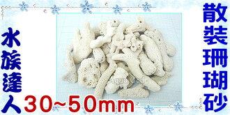 【水族達人】《散裝珊瑚砂1kg.30~50mm》造景的好幫手!