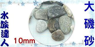 【水族達人】【底砂】《大磯砂散裝1kg.2分(約10mm)》水草造景/美觀/大方!