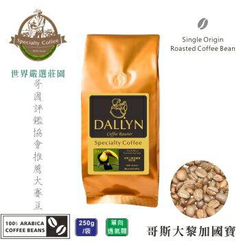 【DALLYN 】哥斯大黎加國寶Costa Rica Tournon Tarrazu  (250g/包)    世界嚴選莊園咖啡豆 0